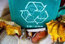 Llaman a cuidar el medio ambiente en Día Internacional del Reciclaje