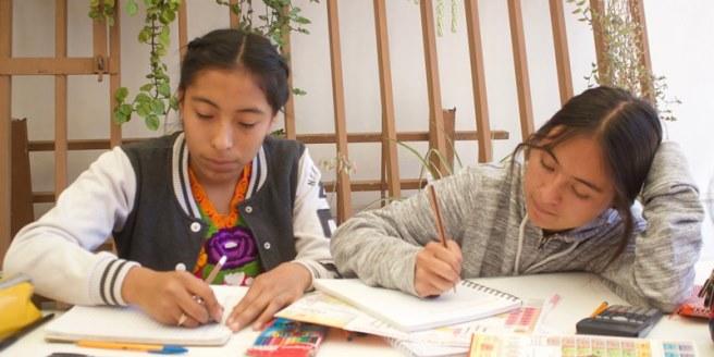 convocatoria fondo Guadalupe Musalem